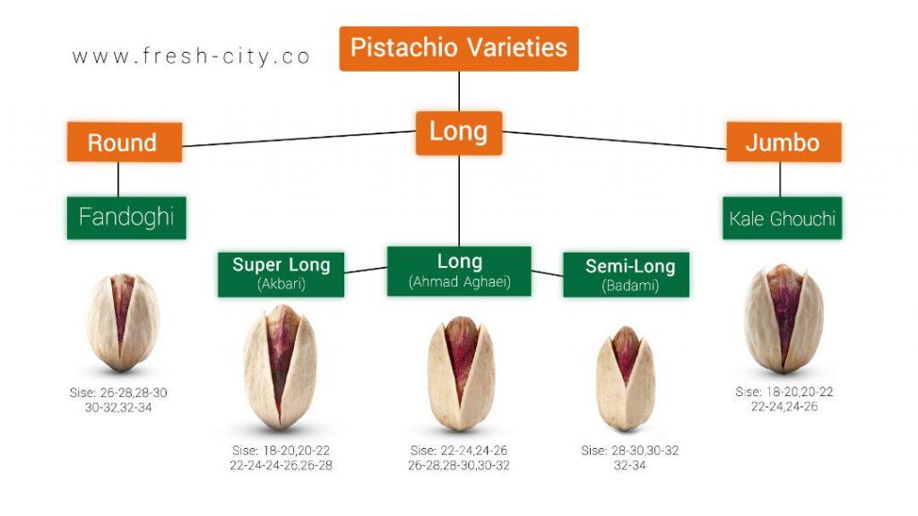pistachio catalog