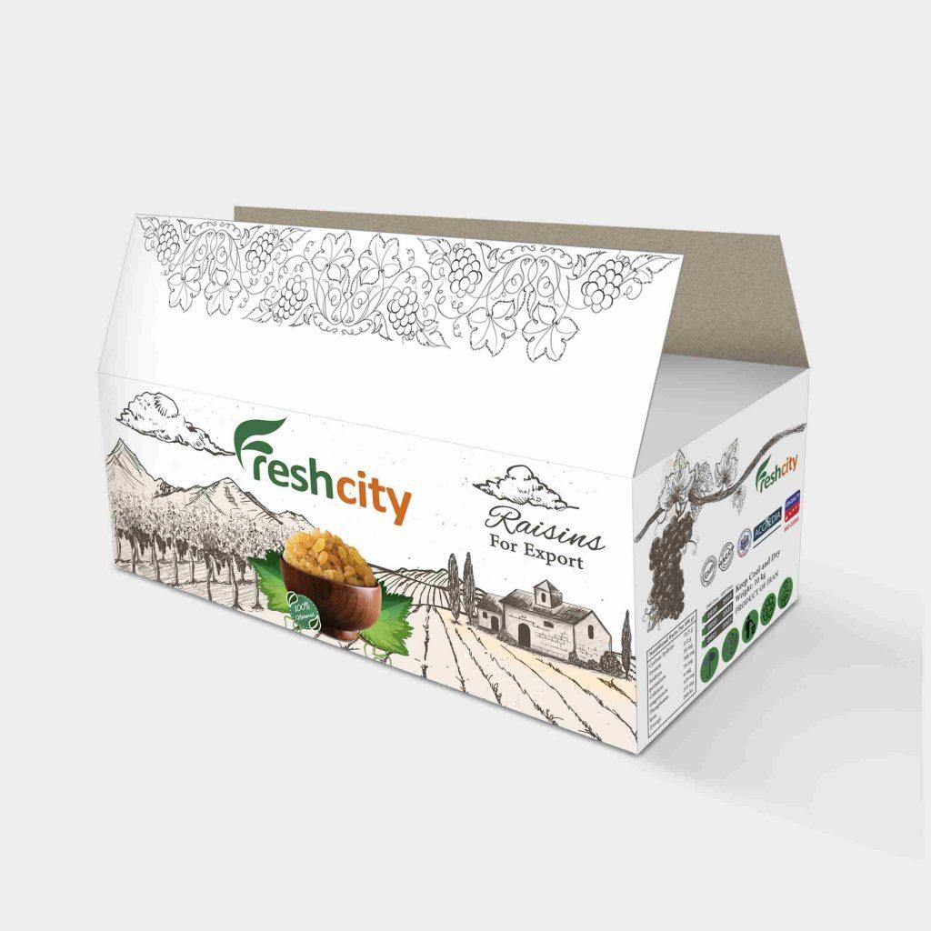 Iranian Raisins pack 3