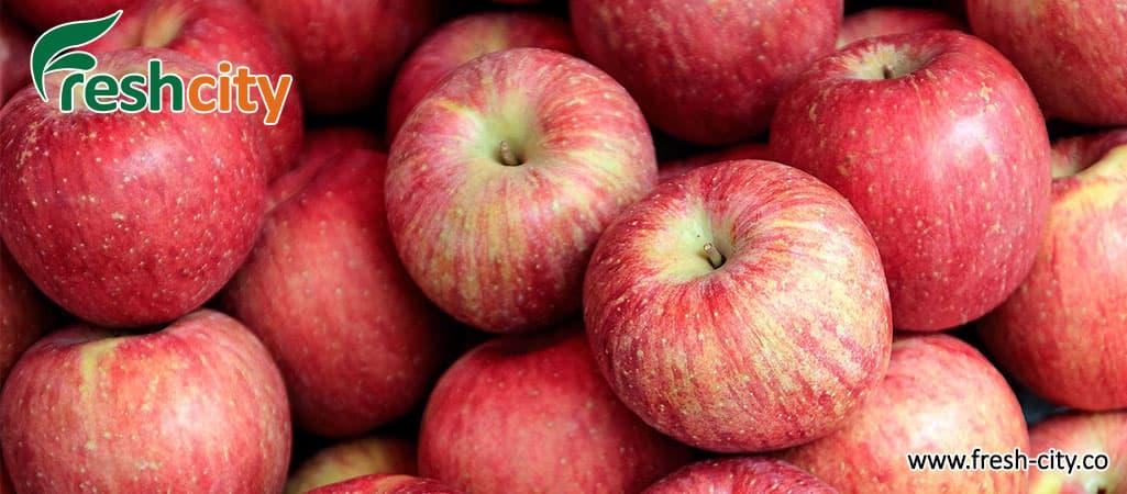 Gala Apple Wholesale