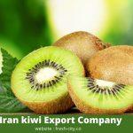 Iran kiwi Export Company