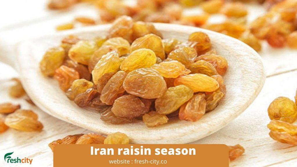 Iran raisin season